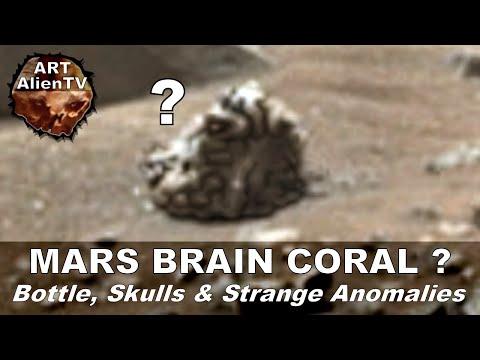 MARS BRAIN CORAL ? Bottle, Skulls In Official NASA Image. ArtAlienTV - 1080p60