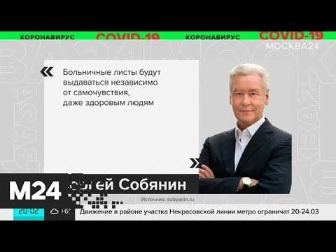 Собянин: находящиеся на карантине смогут получить больничный с курьером - Москва 24