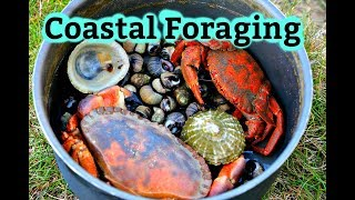 Coastal Foraging & Wild Camping Under The Stars