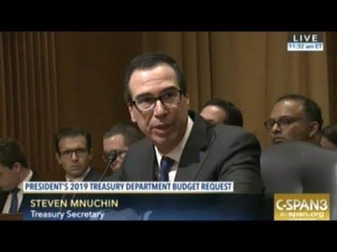 Treasury Secretary Steven Mnuchin Grilled Over President Trump
