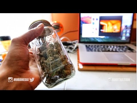 HOME GROWN WEED | SOUR AMNESIA STRAIN REVIEW