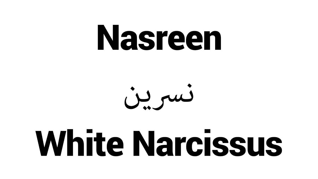 nasreen name