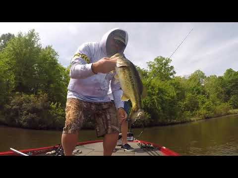 Lake Fork Spring Bass Fishing Guide Trip Catches