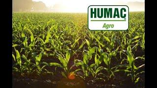 HUMAC Agro - výsledky výskumov na kukurici