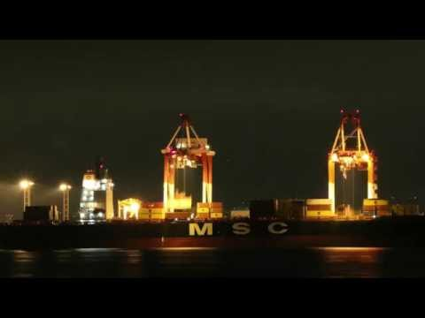 [Landscape from Cosmo Square: cargo ship and crane of Nangang]  4K time-lapse