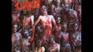 Cannibal corpse   addicted to vaginal skin