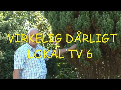 Virkelig Dårligt Lokal TV - Frygtelige øgenavne fra Middelfart