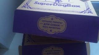 SuperDogBox - коробочки для собак