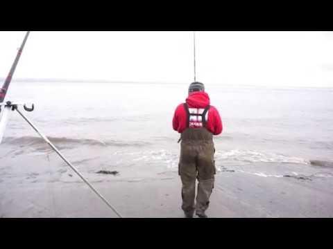 Cod Fishing Portishead   Cod Quest 4