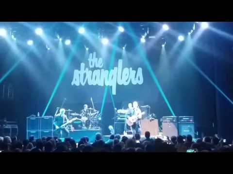 Midnight summer dream The Stranglers live in Athens 20/11/2016