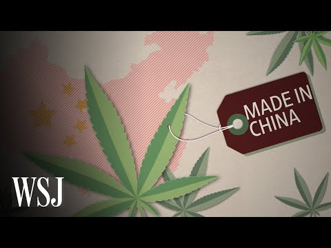 Why China Is Betting Big On CBD | WSJ