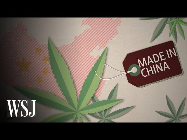 Why China Is Betting Big on CBD | WSJ