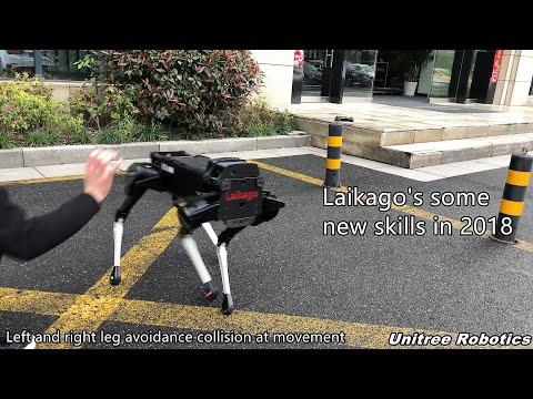 Video thumbnail of Laikago