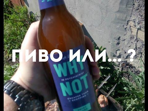 Пиво или пивной напиток? Why not!