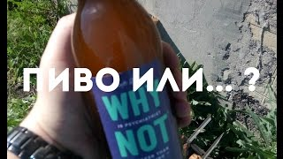 видео Пивной напиток - что это? - Пивная бутылка.