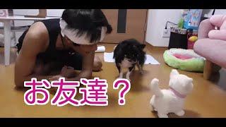 TAKUMA TVテーマソング こんな世の中・・・https://www.youtube.com/wat...