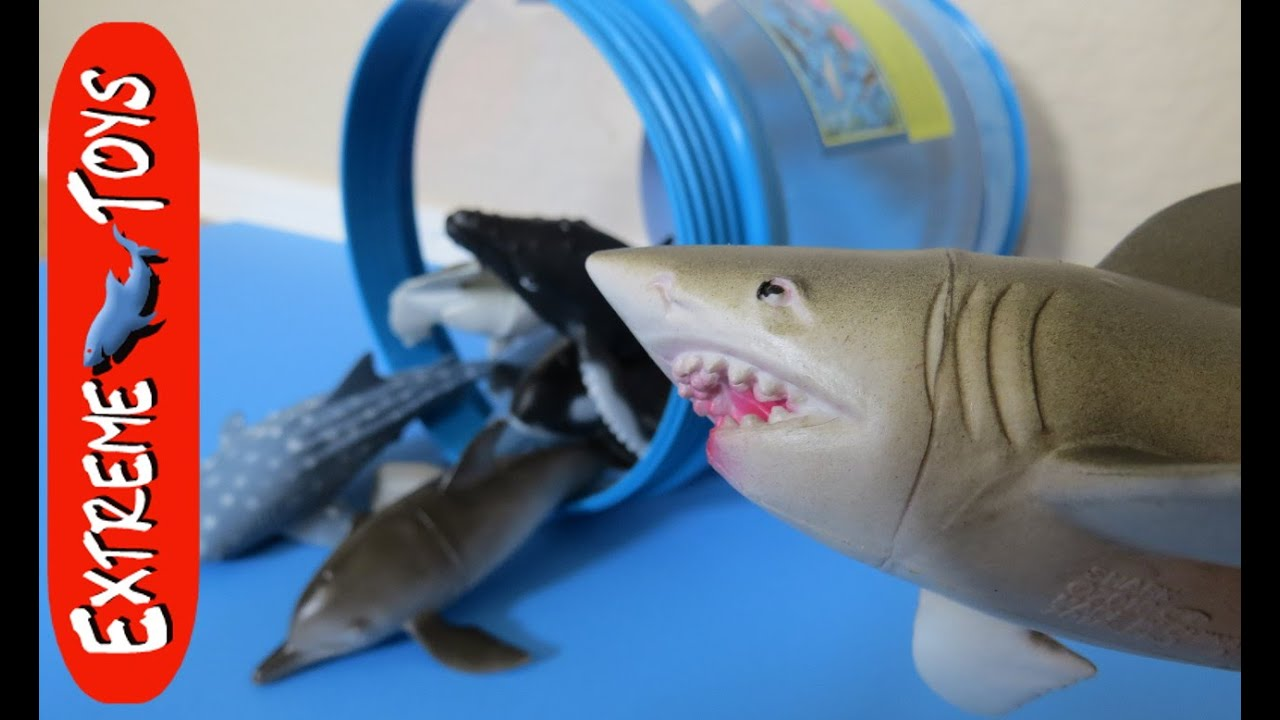 Cool Shark Toys : Great white shark toy causes trouble animal planet bucket