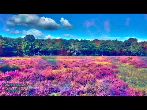 Rudimental - Feel the Love ft John Newman 432hz [Drum and Bass]