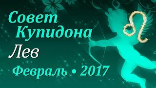 Лев, совет Купидона на февраль 2017. Любовный гороскоп.