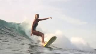 Torq Surfboards MOD FUN funboards