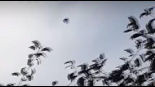 НЛО! видео Факты