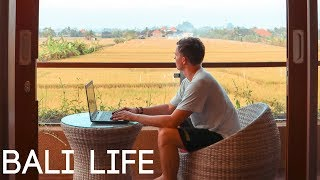 Video ONE MONTH IN BALI - Living & Working in Canggu download MP3, 3GP, MP4, WEBM, AVI, FLV April 2018
