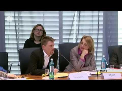 Anhörung zum IT-Sicherheitsgesetz: Linus Neumann Vanity Version
