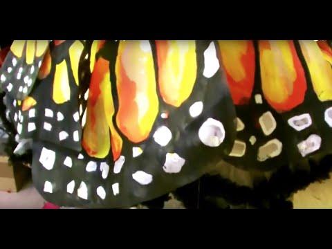 Karneval Schmetterling Kostum Babochka Kostyum Selber Machen Anregung