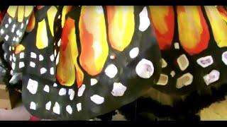 Karneval Schmetterling Kostüm Бабочка костюм selber machen-Anregung  шить