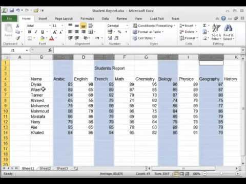 تعلم اكسل Excel 2010 من الصفر إلى مستوى الاحتراف