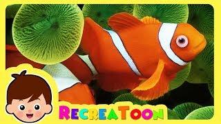Animaux drôles #1 | vidéos pour les enfants | Animaux pour bébé |  animaux mignons