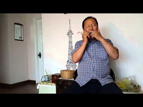 [울고넘는 박달재, A] 문광호 선생님 하모니카