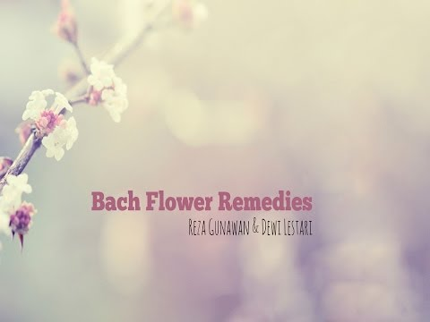 Reza Gunawan & Dewi Lestari - Moody no More with Bach Flower Remedies