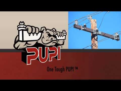 Why PUPI?