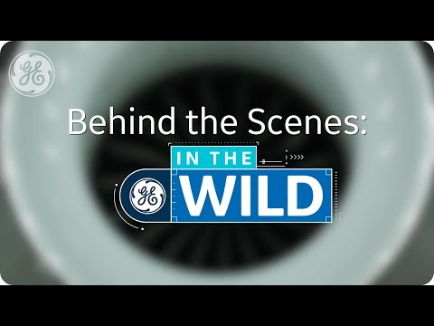 Behind the Scenes: In The Wild - GE Aviation