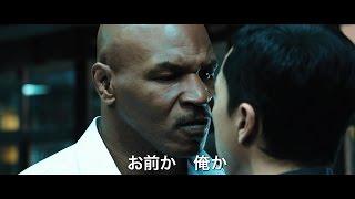 ローグ・ワン/スター・ウォーズ・ストーリー』、『トリプルX:再起動』...