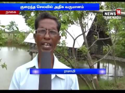 Agriculture : Sirkazhi farmer doing Successful Organic Farming by Farm Pool Method