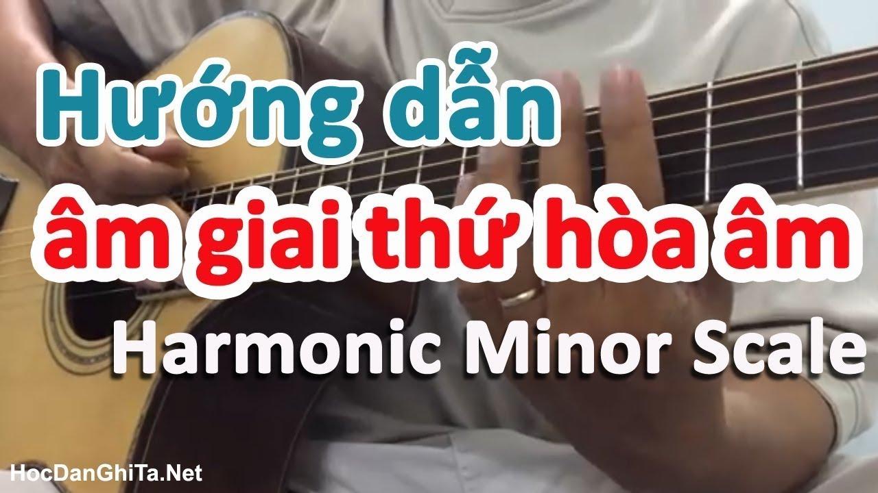 Âm giai thứ hòa âm - Harmonic Minor Scale là gì? học guitar online miễn phí  - Guitar4Freedom