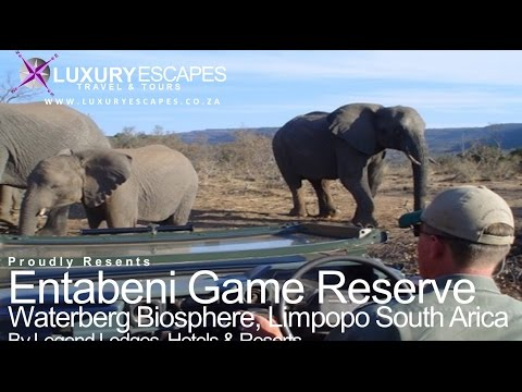 Entabeni Game Reserve Limpopo South Africa