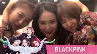(Part 39) K-Idols Dancing and Singing to BLACKPINK Songs
