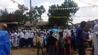 Part 2: Timket Celebration At Shiro Meda (Short Video)