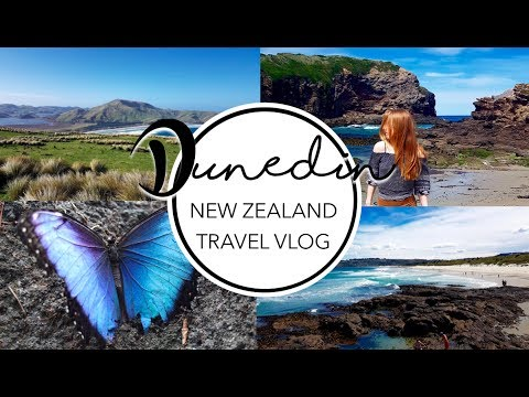 TRAVEL VLOG │Dunedin ✈ New Zealand │ 2017