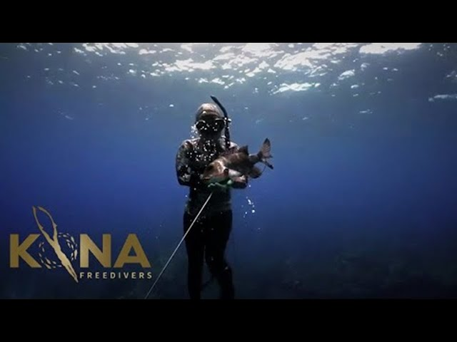 5 Ways to Dominate Spear Fishing Kona