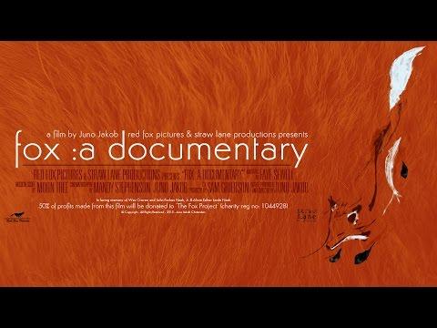 Fox: A Documentary - A Film by Juno Jakob