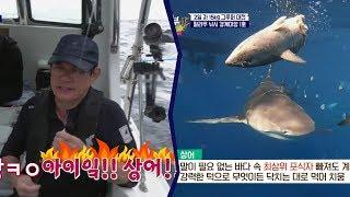 경규 '상어'에게 낚시줄 끊기다?!