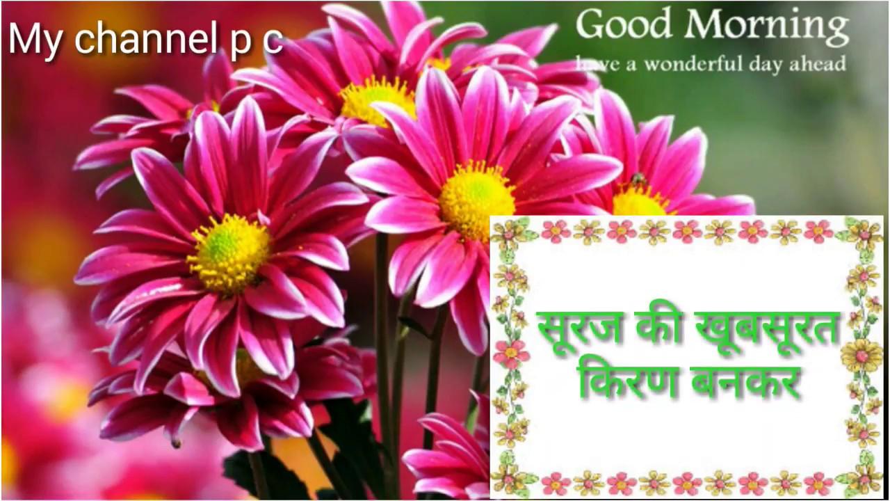Good Morning Video Happy Sunday Wishes Whatsapp Beautifull Quotes