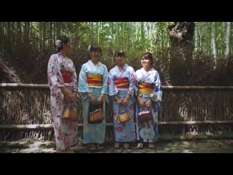 Japan travel video part 2