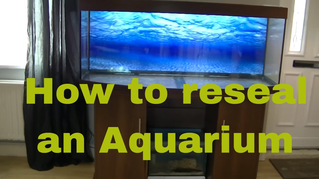 How to reseal a leaking fish tank youtube for How to reseal a fish tank