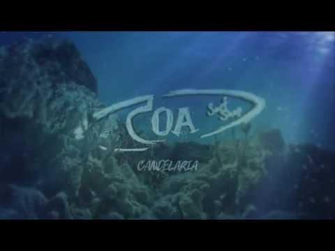 COA SURF SHOP - CANDELARIA