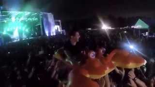 Firefly Music Festival 2015 Jungle Lobster Crowd Surfer
